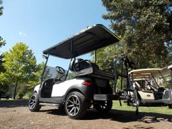 2011 Whack Edition Phantom Golf Cart