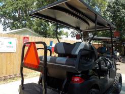 2012 GoBGo Carbon Edition Phantom Club Car Precedent 48v Electric Golf Cart